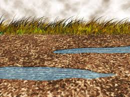 water pollution essay ways to reduce water pollution wikihow  ways to reduce water pollution wikihow reduce stormwater runoff at your home pollution essays pollution essays