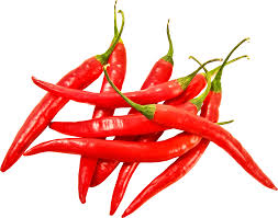 chili pepper png. Exellent Png Red Chili Pepper PNG Image On Chili Pepper Png R