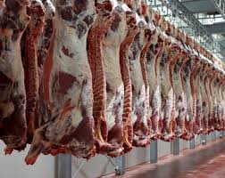 one in four uk abattoirs fails to meet basic hygiene standards one in four uk abattoirs fails to meet basic hygiene standards