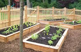 Small Picture Perfect Vegetable Garden Design Monthbymonth Guide To Gardening