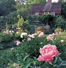 tashavermonthomestead2 tasha garden 2