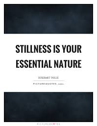 40 Stillness Quotes 40 QuotePrism Beauteous Stillness Quotes