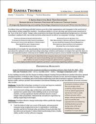 C Level Resume Examples Examples Of Resumes In C Level Resume