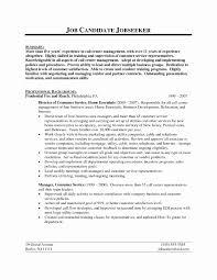 Best Sales Resume Format Resume Template Ideas