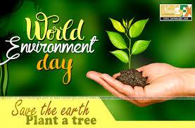 Kết quả hình ảnh cho world environment day