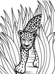 Coloring Pages Leopard Coloring Pages Snow Ocelot Page Leopard