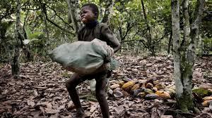 child labour quotes education need child labour