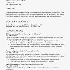 Profile Example Resume Resume Profile Example Free Letter Templates