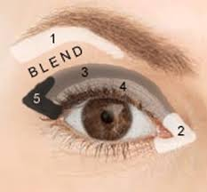 where to apply eye shadow for a basic look use neutral colors for daytime and