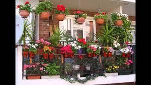 garden ideas balcony plant pots ideas you