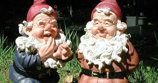 is the garden gnome dying out huge decrease in number of gnomes in the uk irish mirror