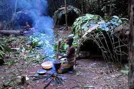Hunter-gatherer - Wikipedia