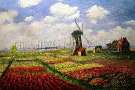 field of tulips with windmill in holland