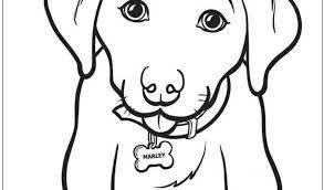 Download Disegni Da Colorare Cani Disegni Da Colorare