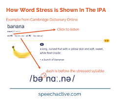 The international phonetic alphabet (ipa) is a set of symbols that linguists use to describe the sounds of spoken languages. English Word Stress In The International Phonetic Alphabet Ipa