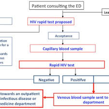 Flow Chart Of Procedures For Hiv Screening With A Rapid Test