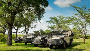Ulusaba | Private Safari Game Reserve | South Africa Destination Wedding  Venues & Packages | My Overseas Wedding