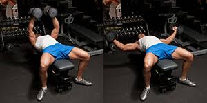 Image result for dumbbell flyes