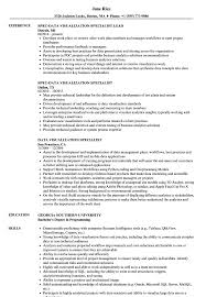 Data Visualization Resume Examples Data Visualization Specialist Resume Samples Velvet Jobs 3