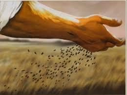 « Si le grain semé en terre ne meurt pas, il se dessèche ; s'il meurt, il donnera naissance à beaucoup d'autres grains.» Images?q=tbn:ANd9GcQ1u7h6EaZZY7Fy8JDiNibEjLtKSiuJnfsdldQlNBAHG-c5ycN2