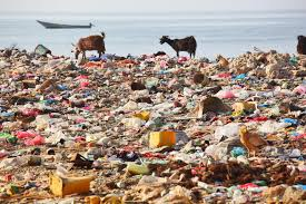 environmental degradation esdaw picture