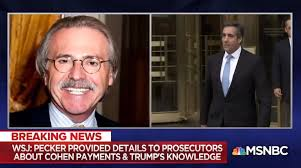 Image result for new york times trump david pecker