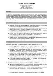 Student Resume Profile Statement Examples Order Custom Essay Online