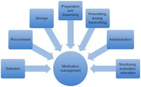 Full Text Role Of Pharmacists In Optimizing The Use Of