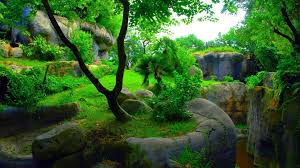 Nature HD 3D Wallpapers 1080p ...