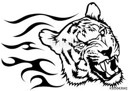 tiger black and white drawing. Modren White Tiger Head With Flames  Black And White Drawing Illustration Vector On And