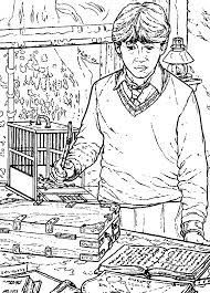 Kids N Funcom Coloring Page Harry Potter And The Chamber Of