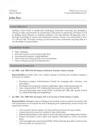 Web Developer Objective Resume career objective web developer Savebtsaco 1