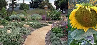 SB Garden Design Portfolio Mediterranean Garden Gorgeous Mediterranean Garden Design Image