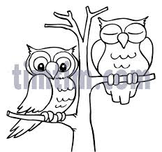 Small Picture Best 25 Drawings of owls ideas on Pinterest How to draw owl