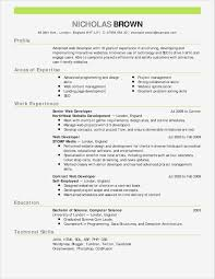 Free Resume Formats For Word Book Of Basic Resume Template Word New