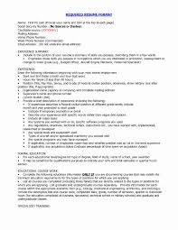 Appropriate Resume Format Awesome Hybrid Template Functional Fr Sevte