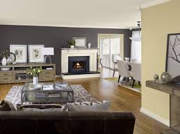 living room accent wall painting color