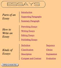 writing good paragraphs and essays montessori muddle writingden s page on essays