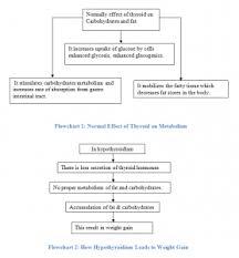 Hypothyroidism Pathophysiology Flow Chart Hypothyroidism A Nursing Analysis