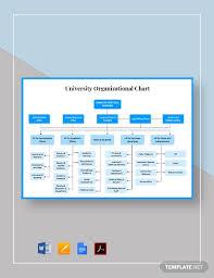 Download 29 Printable Organizational Chart Templates Pdf