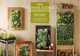 Small Picture Beautiful Indoor Vegetable Garden Gardening Forum And I Just Took