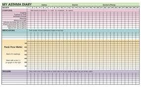 Peak Flow Meter Chart Child How To Use A Peak Flow Meter