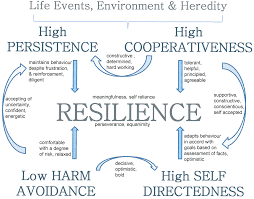 the relationship between resilience and personality traits in full size image