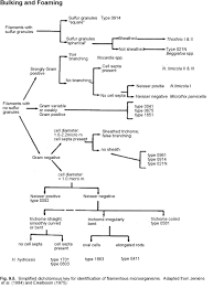 Development Of A Flow Chart For Identification Of