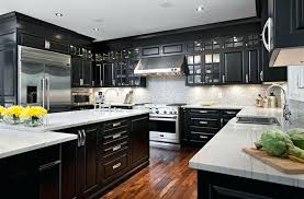 Image Paint Kitchen Black Cabinets Kitchens With Black Cabinets Can Still Be Kitchens Modern Kitchen Cabinets Black And Dulichvietinfo Kitchen Black Cabinets Dulichvietinfo