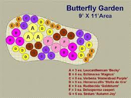Small Picture Best 20 Butterfly garden plants ideas on Pinterest Butterfly