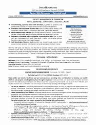 Best Software Engineer Resumes Software Developer Resume Projects New Best Resume Software Awesome