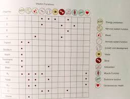What Vitamins To Take Together Chart Stierli Health Consulting Updates Home Of Dannythecoach