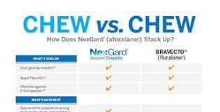 Nexgard Clinic Education Tools