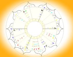 Baby Child Birth Chart Consultation Pre Recorded Mp3 Not In Person